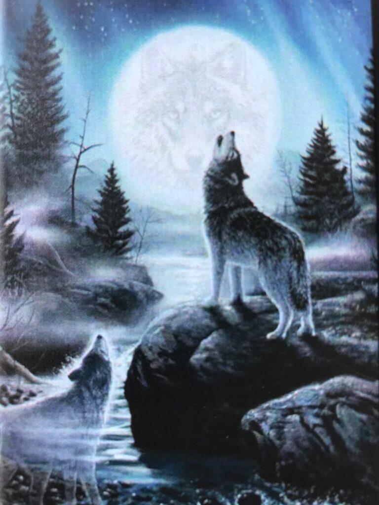 Lobo Howling at the moon near rushing river.
